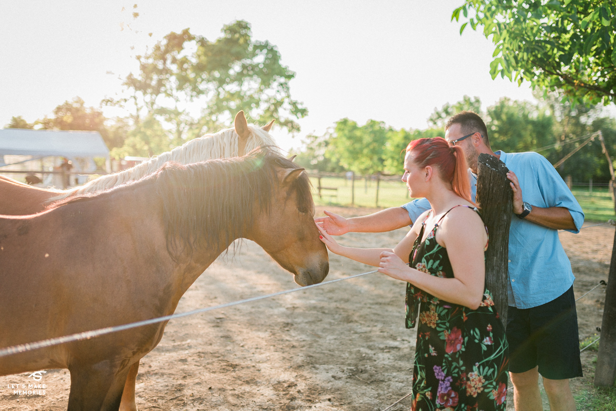 couple petting horse on a ranch at sunset