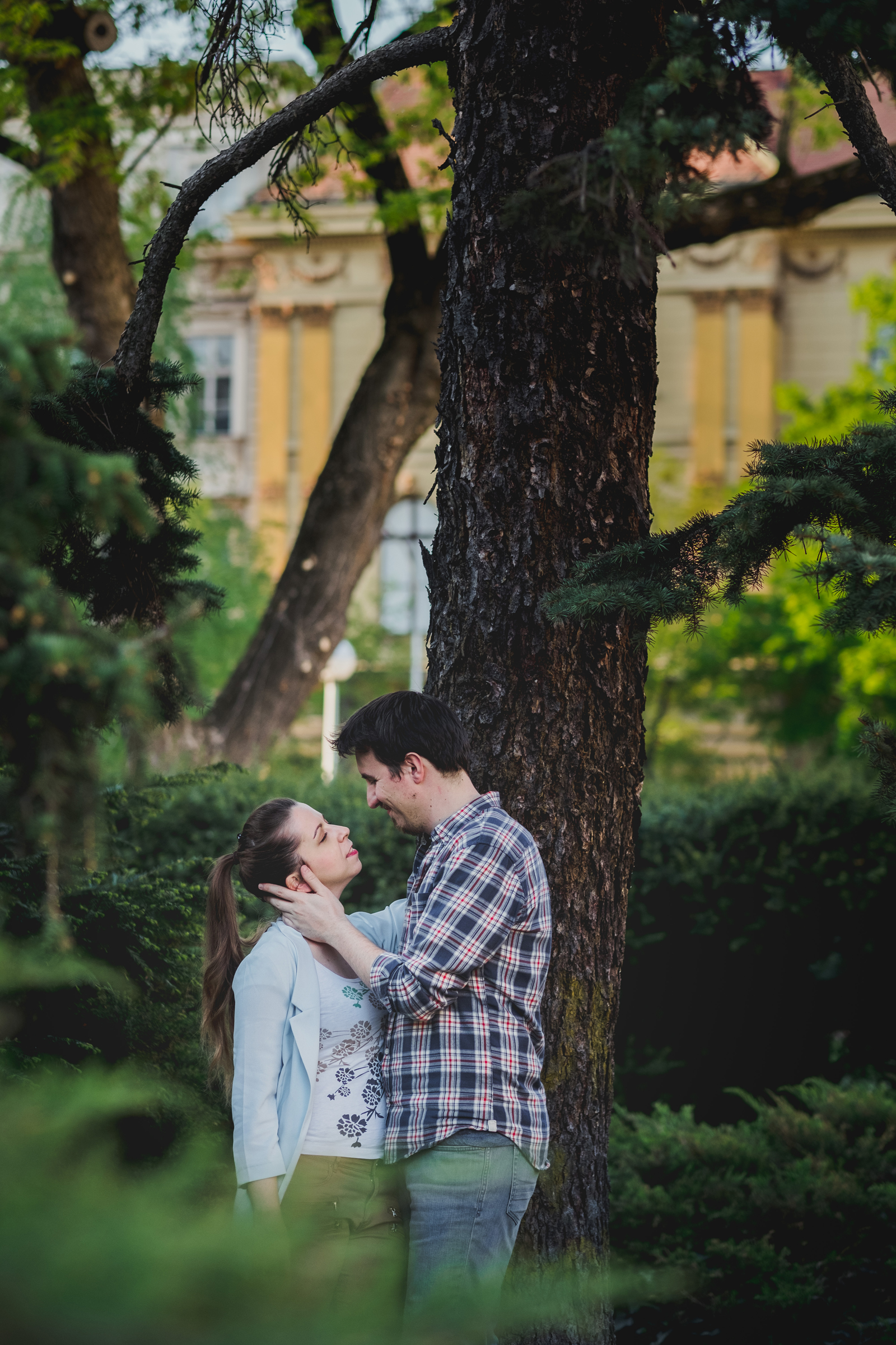 couple kissing under the tree. Film shot, Fuji 400h, Mamiya 645 PRO TL medium format camera, sekor 45mm f.28