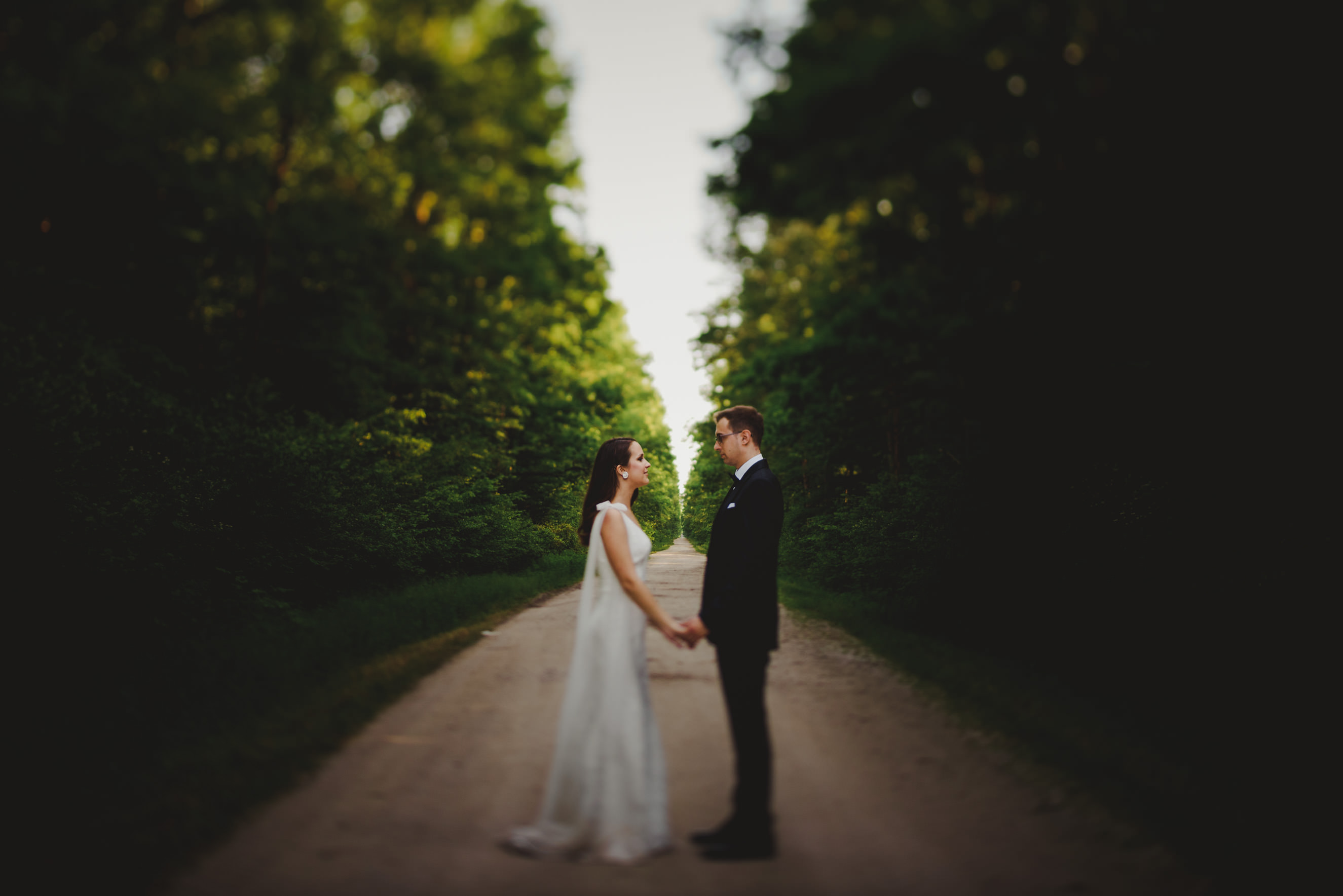 bride and groom holding hands in the middle of the forrest split road